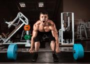 Exercícios Para Ganhar Massa Muscular: Conheça aqui os melhores!