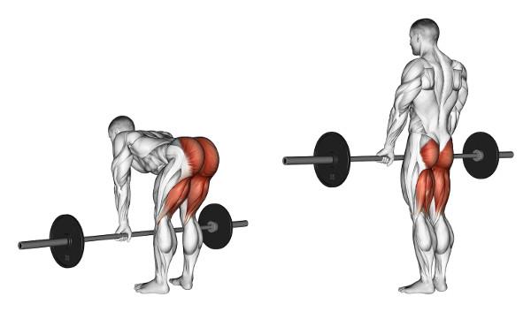 Exercícios Para Ganhar Massa Muscular levantamento terra