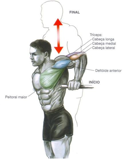 Exercícios Para Ganhar Massa Muscular paralelas