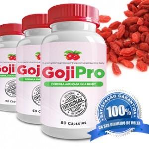 Goji Pro – Goji Berry em Cápsulas