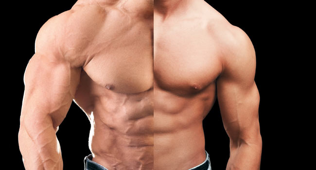 Does Testosterone Build Muscle In Aging Women