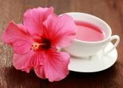 Chá de hibisco: Emagrecimento natural!