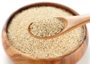 Quinoa – Saiba tudo sobre este grão