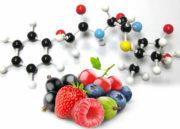 Dieta Ortomolecular: O que é? Funciona? Entenda Aqui!