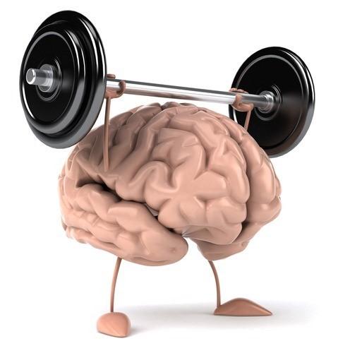 exercitando o cérebro