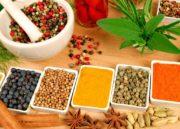 Dieta Funcional:  Conheça TODOS os seus benefícios AQUI!