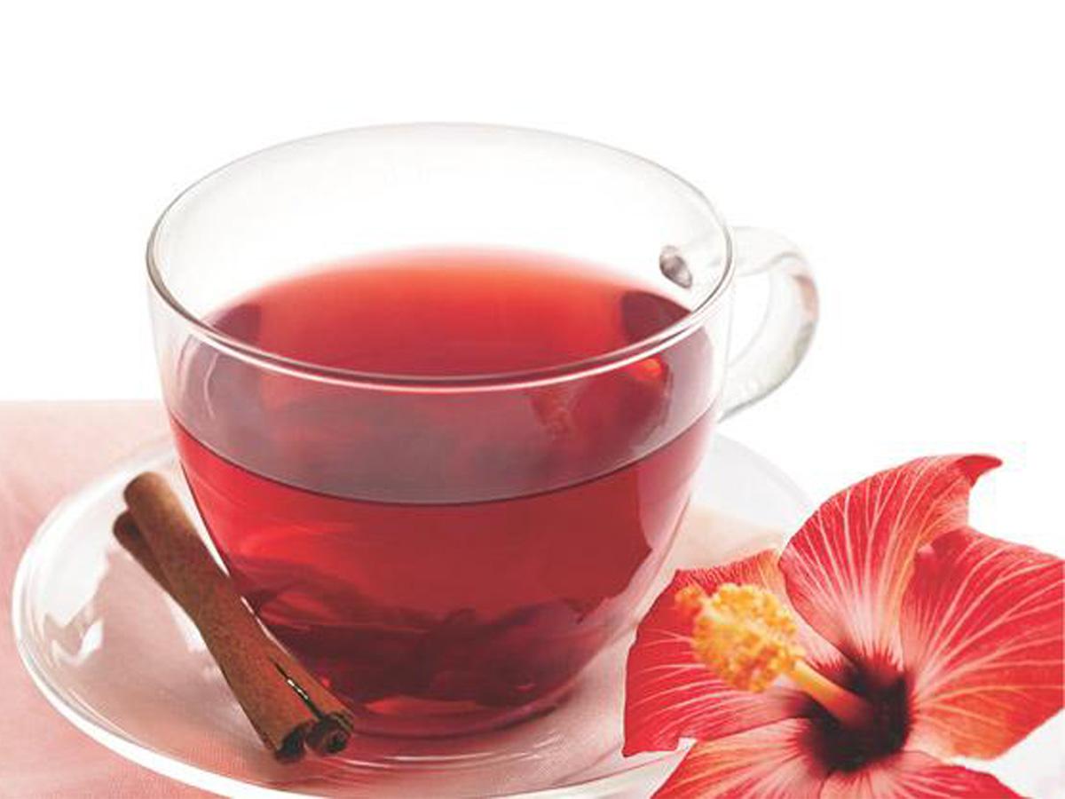 chá emagrecedor hibisco