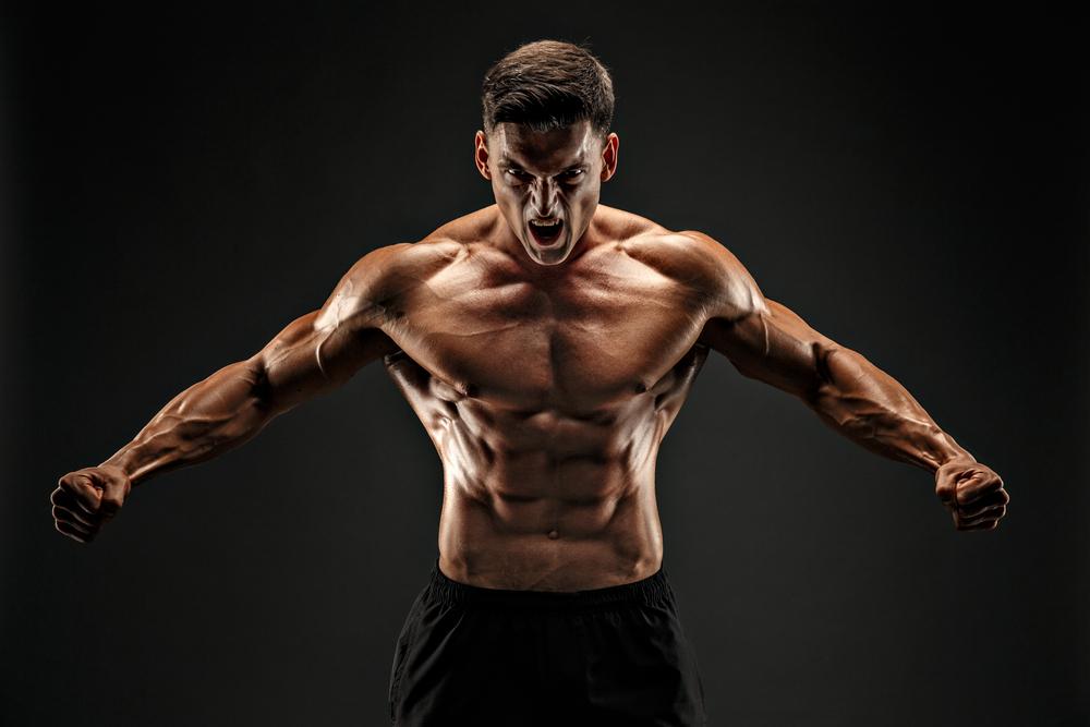fisiculturismo músculos
