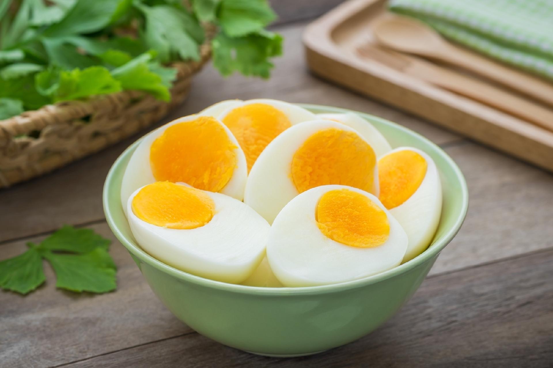 alimentação com ovo