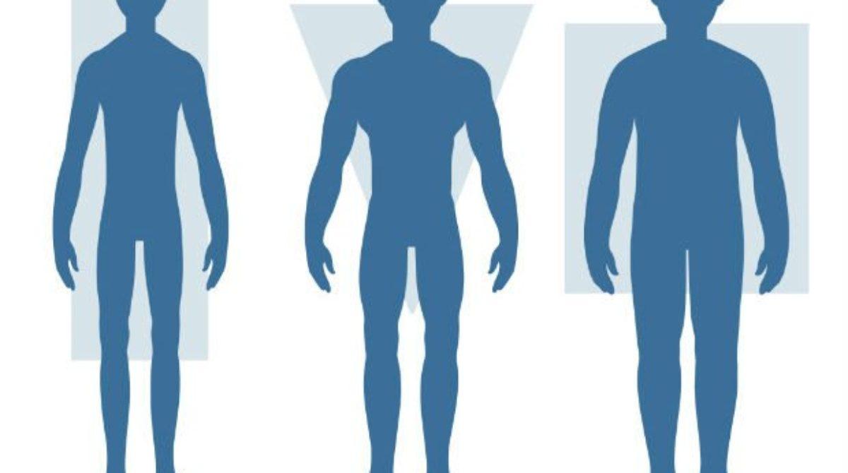 biotipos corporais
