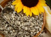 Pantotenato– Vitamina B5: Descubra como essa vitamina pode ajudar sua saúde!