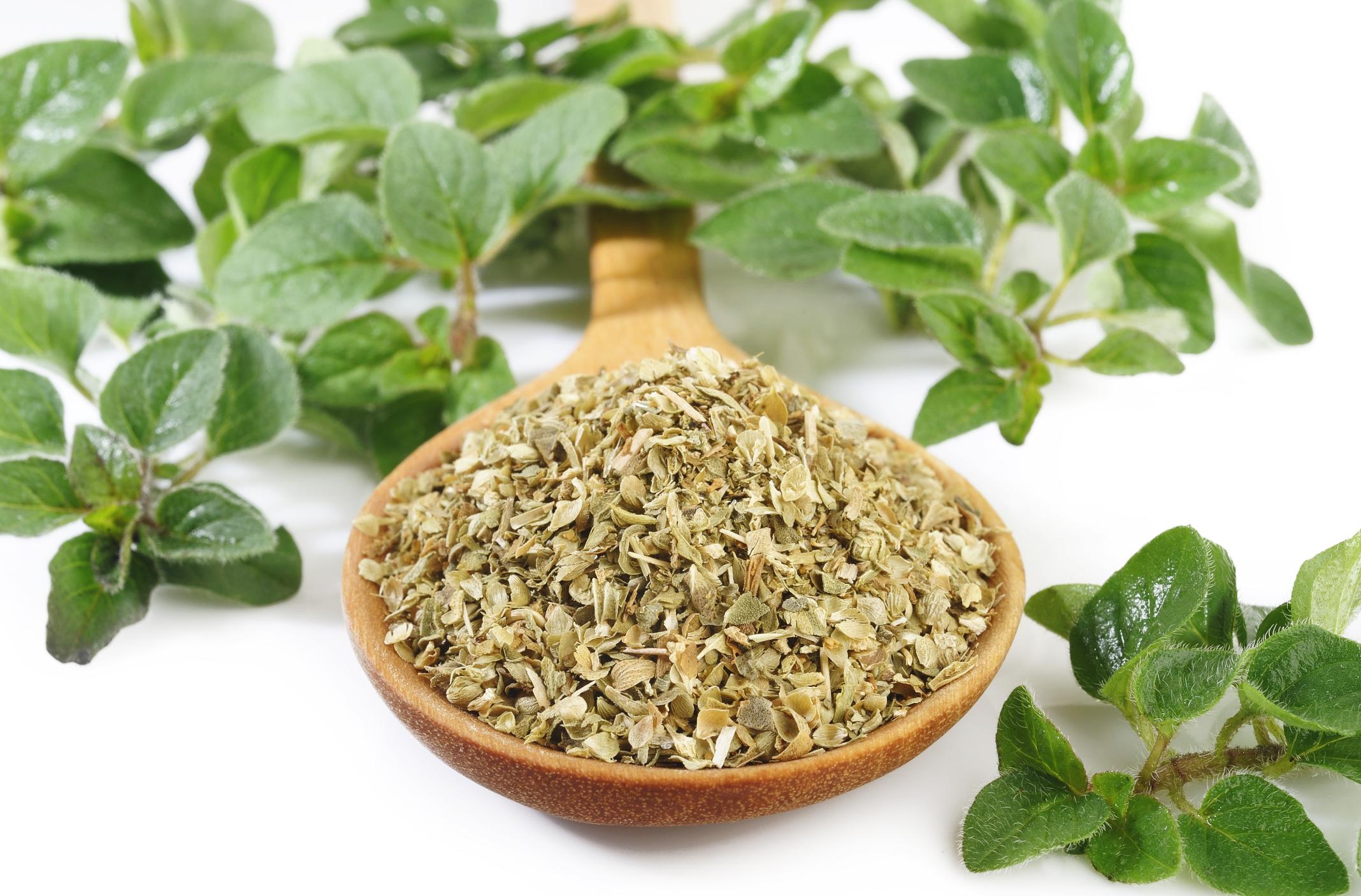 óleo essencial de orégano na aromaterapia