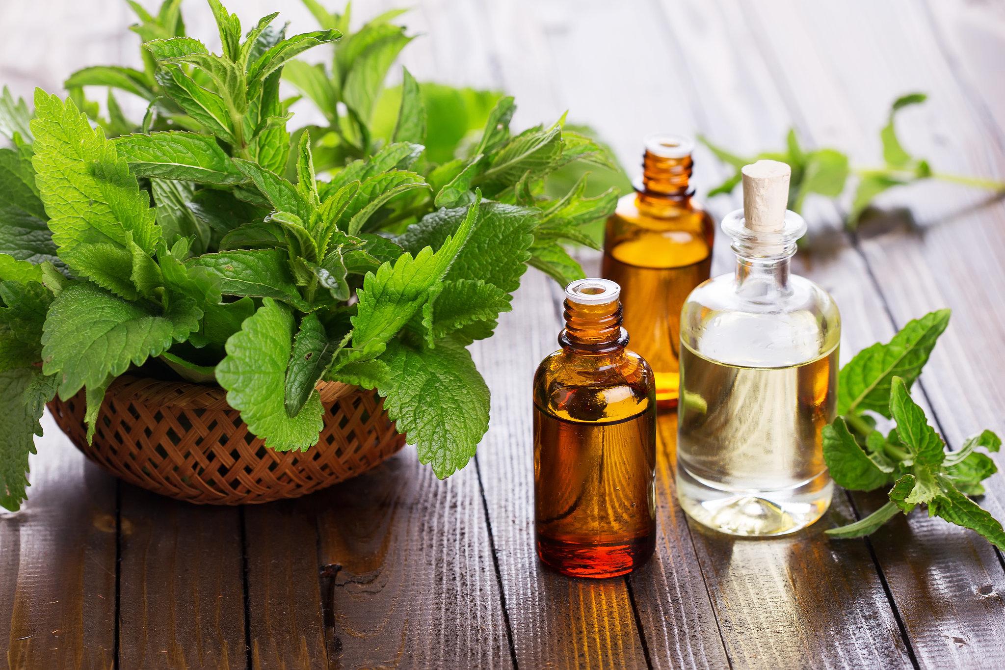 óleo essencial de hortelã pimneta